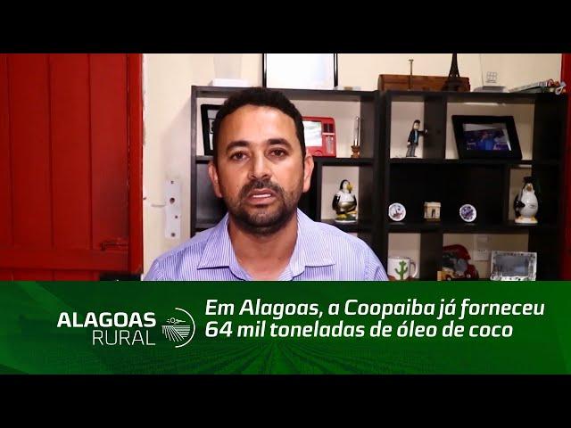 Coopaiba já forneceu 64 mil toneladas de óleo de coco bruto para empresas de biodiesel
