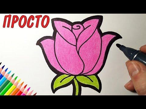 Как красиво нарисовать цветок