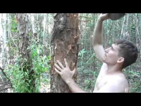 Как построить примитивное жилище в джунглях
