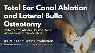 Total Ear Canal Ablation and Lateral Bulla Osteotomy