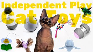 Electronic cat toys from AliExpress for active cats | My life with DevonRex