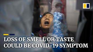 Coronavirus: loss of sense of smell or taste could be a symptom of Covid-19