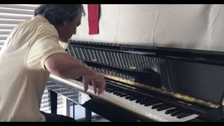 XUAN YEU THUONG. Arrangement & Played by Nguyen Tho.