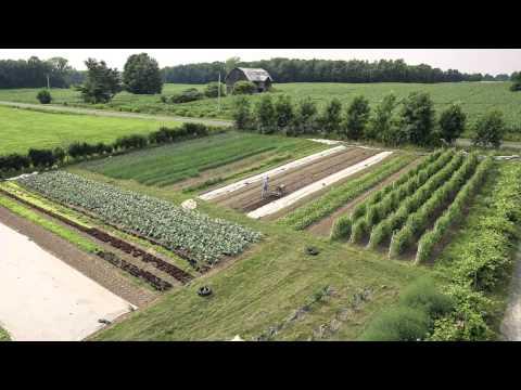 New Farms, Big Business TRAILER