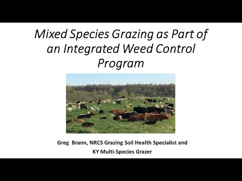 Mixed Species Grazing as Part of an Integrated Weed Control Program-