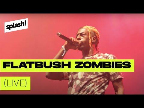 Flatbush Zombies live @ splash! 18
