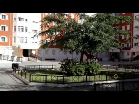 Argus/Westmed Insurance - Gibraltar