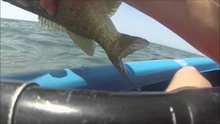 A Couple Big Ol' Lake Huron Catfish + a couple other catches