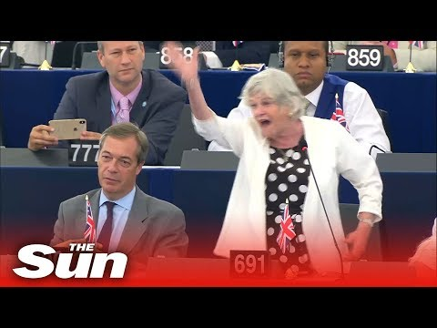 Ann Widdecombe's explosive rant at the EU Parliament