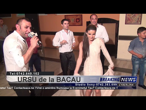 Ursu de la Bacau-MAI STAI-Forta 2014 Tel:0742.640.102 Full HD 1080P 2