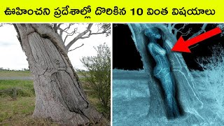 Top 10 Discoveries found in unexpected places | Bmc facts | Telugu