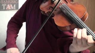 STEINS;GATE(シュタインズゲート)Anime OP / Hacking to the Gate Violin:TAM