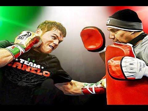 Training Motivation | Canelo Alvarez | We Own It (KP)