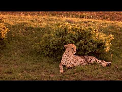 Wild Routes of Kenya-Subukia Bandas