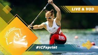 2019 ICF Canoe Sprint Junior & U23 World Championships Pitesti Romania / Day 3: Heats