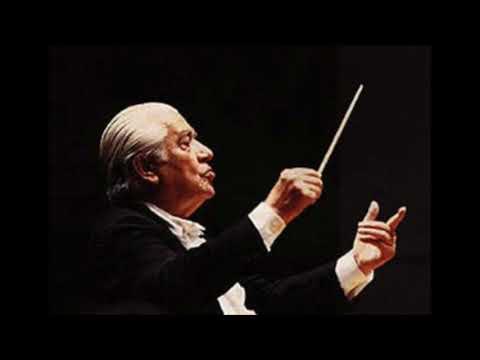 Beethoven Violin Concerto (1/3)