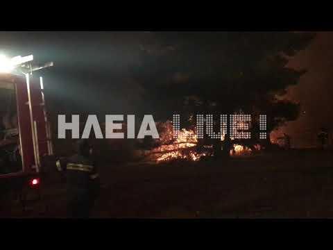 Μεγάλη φωτιά στην Ηλεία - Εκκενώθηκαν σπίτια - Δείτε τα βίντεο