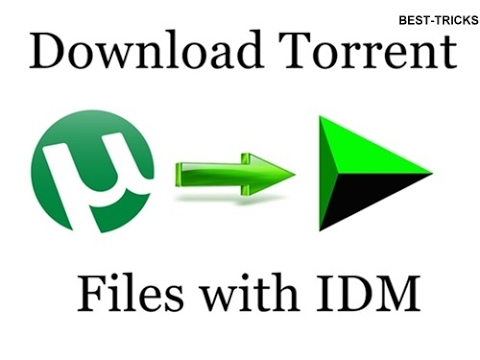 how to download hindi movies using idm