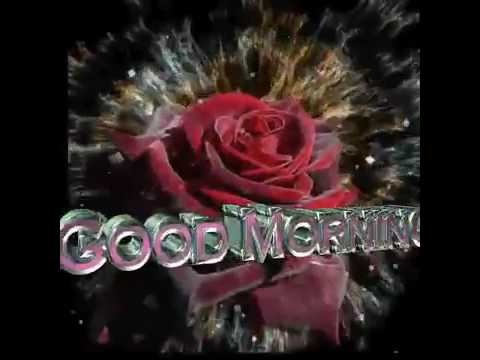 good morning rose gif youtube
