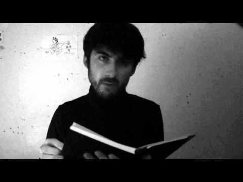 Terrorbull Stories - The Florist's Window