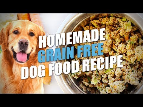 Homemade Grain Free Dog Food Recipe (Healthy and Cheap)