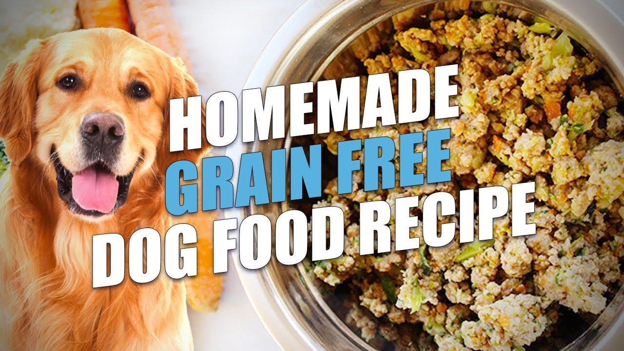 Homemade Grain Free Dog Food Recipe (Healthy and Cheap) - YouTube | Make Your Own Dog Food Allergies