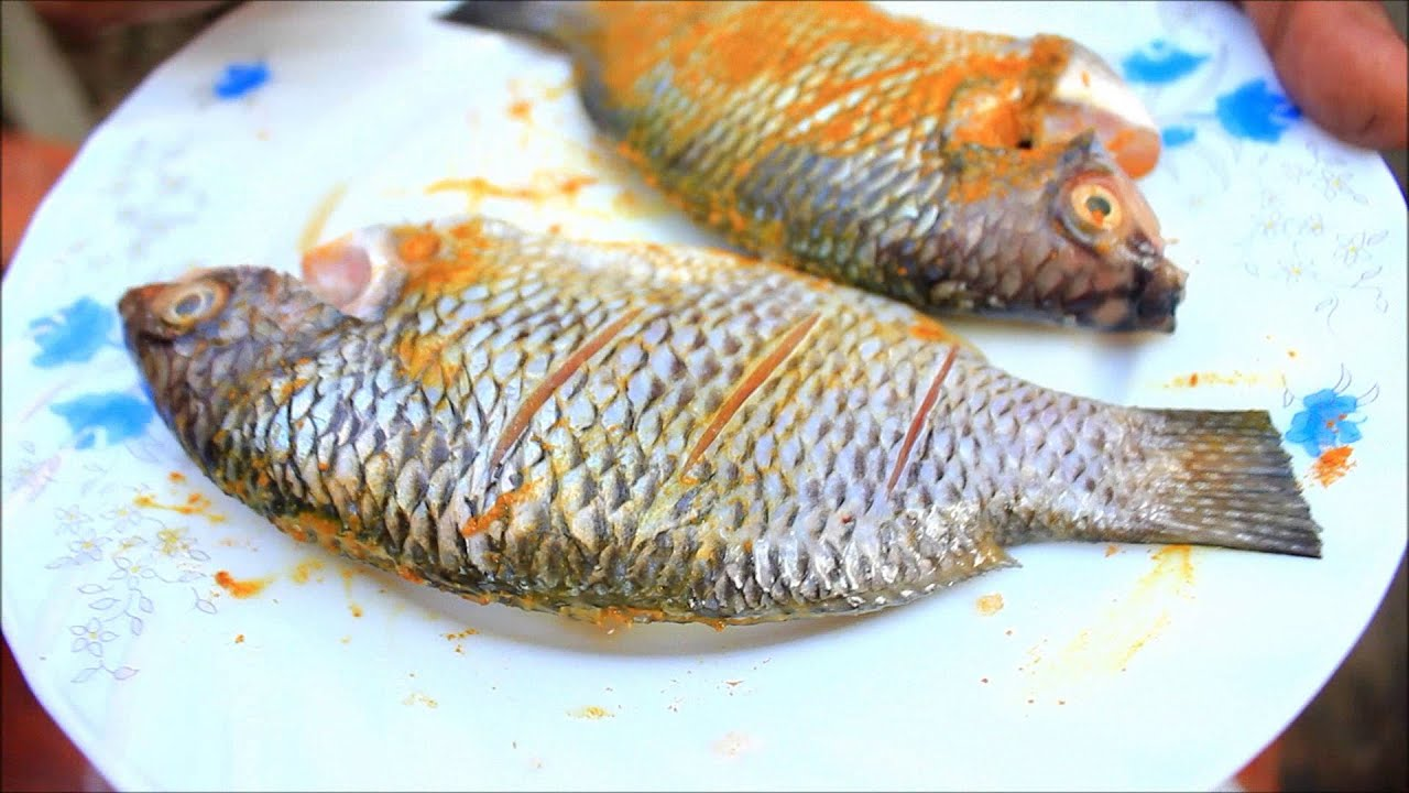Bengali tilapia fish dupiaza youtube for Fortescue fishing report