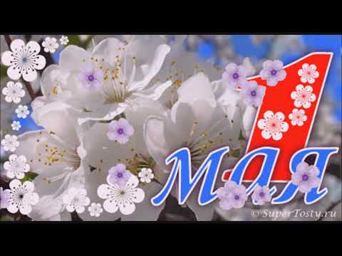 Веселое поздравление с весенним  праздником 1 МАЯ!!!🌸🌺🌸🌸🌺🌸 - Приколы видео