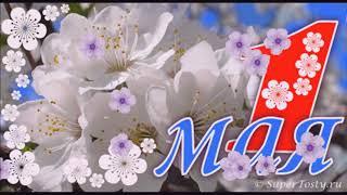 Веселое поздравление с весенним  праздником 1 МАЯ!!!🌸🌺🌸🌸🌺🌸