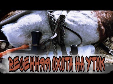 Весенняя Охота на уток  март(2020г.)Республика Калмыкия.