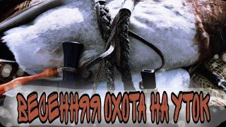 Весенняя охота на уток 2020 в Калмыкии