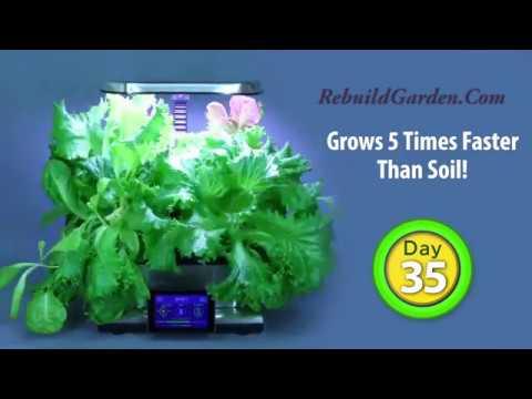 Aerogarden How To Grow Vegetables Indoors Without Soil Rebuild Garden