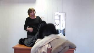 Пледы Glen Saxon с меховой оторочкой(, 2013-04-30T14:07:01.000Z)