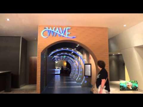 [HD] Disney's Contemporary Resort Tour and Walkthrough~Walt Disney World