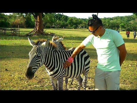 'Biyahe ni Drew' in Busuanga (Full episode January 30, 2015)