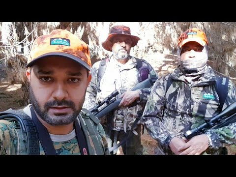 NSW State Forest Hunt - April 2019.
