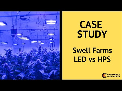 Swell Farms Case Study of California Lightworks SolarSystem® 1100 LED vs   1000w DE HPS Gavita