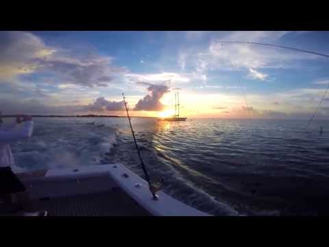 SEA HORSE CHARTERS - Islamorada Fishing video by Don Catlow