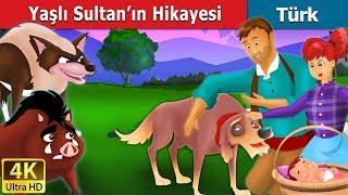 Yaşlı Sultan'ın Hikayesi | Masal dinle | Masallar | Peri Masalları | Türkçe peri masallar