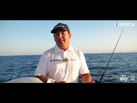 A Pesca con