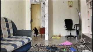 Пёс один дома(Посмотрите, чем занимается собака, когда никого нет дома., 2013-03-22T05:09:41.000Z)