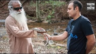 Ask Anything you Wants to Sadhguru | Youth And Truth How To