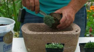 Planting Hypertufa: Rose-Hill Gardens Video Series Episode Four