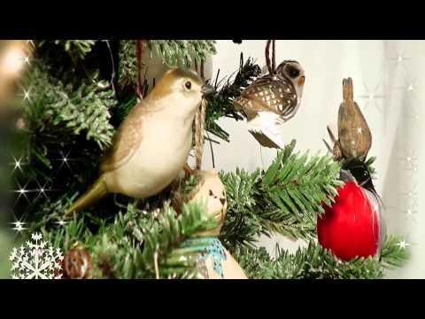 фото елки зима
