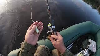 Первая рыбалка на щуку после карантина