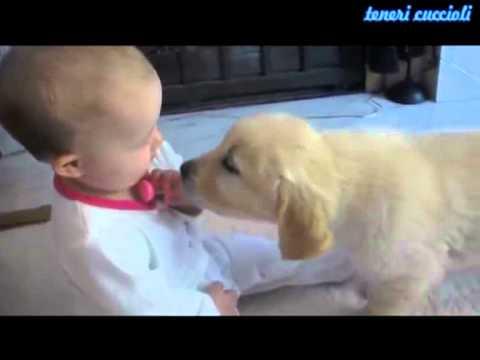Piccolo bimbo e cucciolo si incontrano per la prima volta  Ultra tenerezza