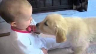 Piccolo bimbo e cucciolo si incontrano per la prima volta -- Ultra tenerezza