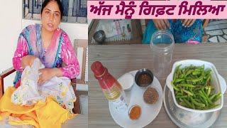 Green chilli pickle | Hari Mirch ka Aachar | Ajj mainu Gift miliya | Pind Punjab de| Punjabi corner