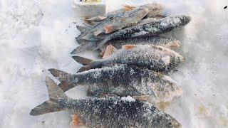 Первая зимняя рыбалка 2020 года С новым годом