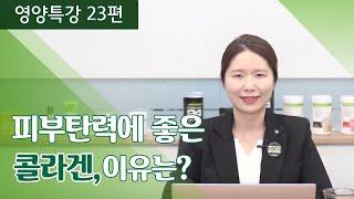[영양특강 23편] 피부탄력에 좋다는 콜라겐, 이유는 …